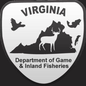 VDGIF-Logo_400x400