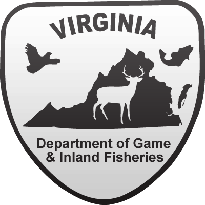 VDGIF-Logo_400x400.png